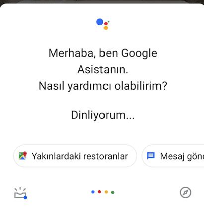 Google Asistan Arayüzü